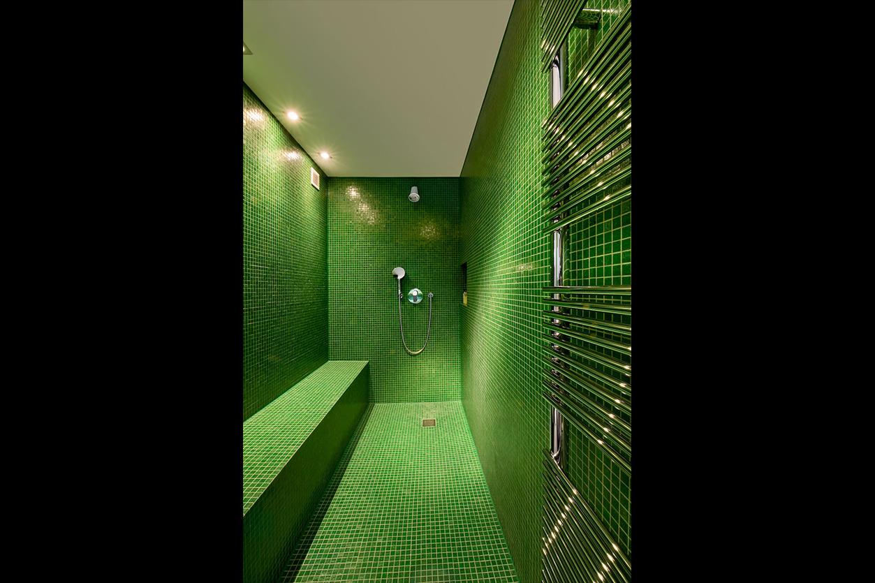 Dreyer Bad, Aqua Cultura Referenz, großes Bad, Loft, grünes Mosaik, Dusche